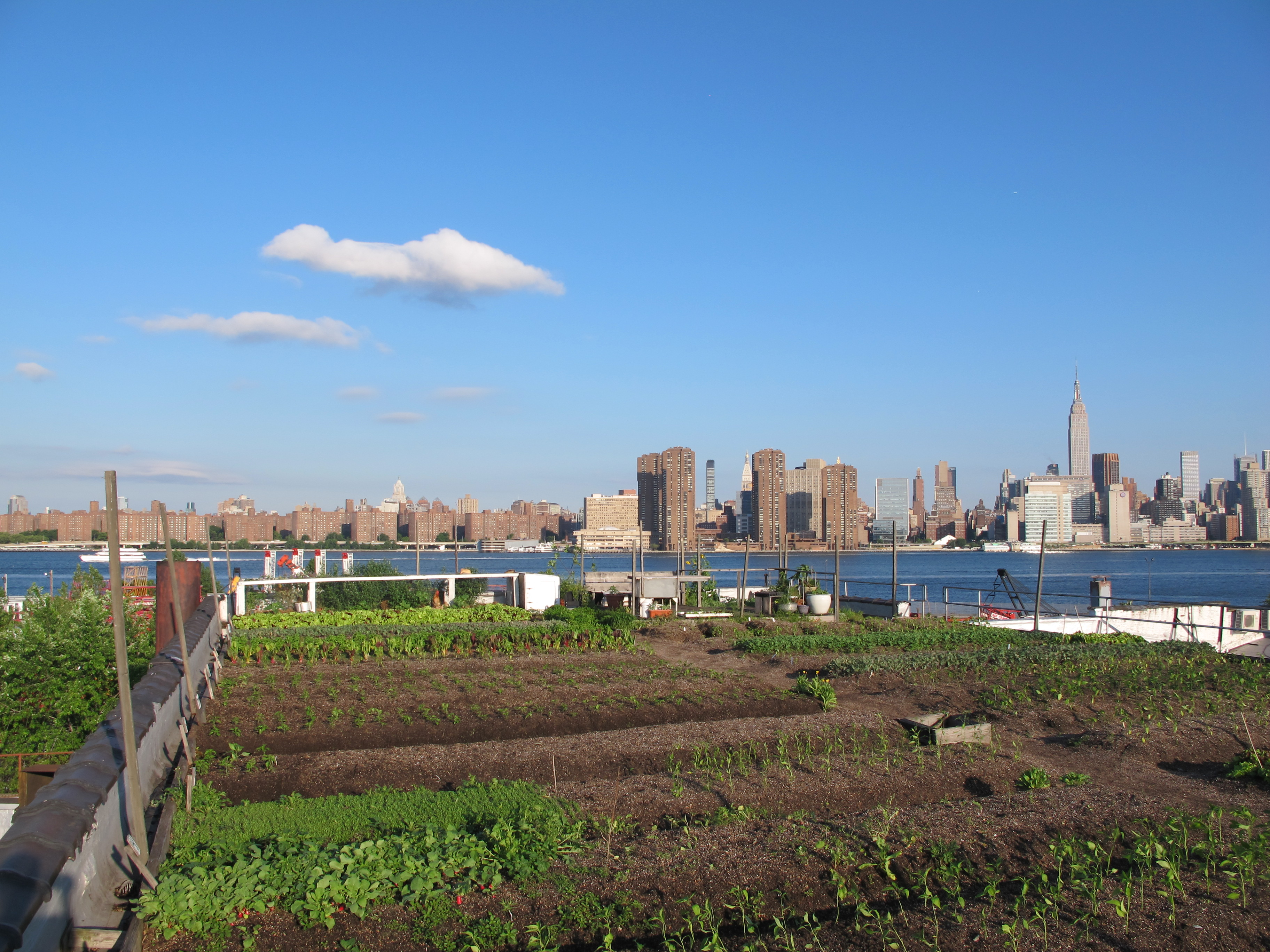 Addressing food water waste and energy yields in urban